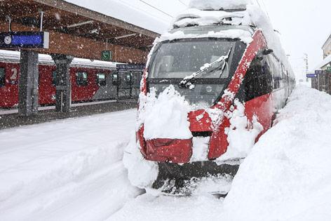 snow wonder by carson