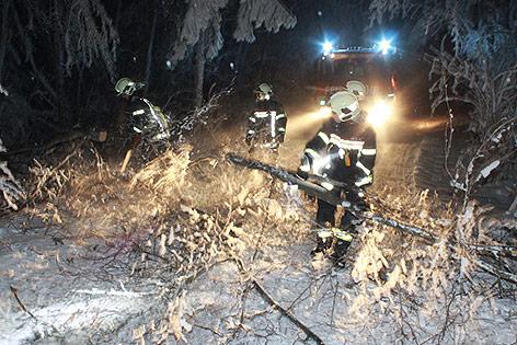 Feuerwehr entfernt Baumäste von der Straße