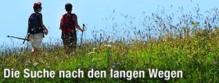 Zwei Frauen wandern bei sonnigem Wetter am Gaisberg durch eine Blumenwiese, im Hintergund das Massiv des Unterbergs bei Salzburg