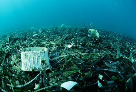 Plastikmüll auf dem Meeresboden