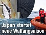 Getötete Wale werden auf ein japanisches Schiff gezogen