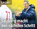 Salzburg-Coach Adi Hütter