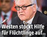 Deutschlands Außenminister Franz-Walter Steinmeier