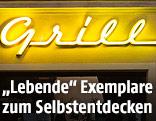 Fassadenschrift in Wien
