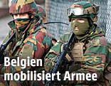 Belgisches Para Commando