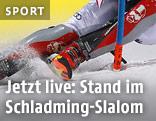 Slalomfahrer auf der Piste