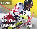 Michael Matt beim Slalom