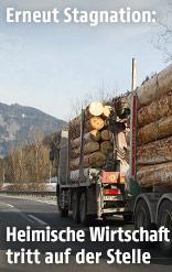 Ein Holztransporter auf der Autobahn