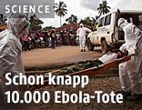 Hilfskräfte tragen einen Ebola-Toten zu einem Auto