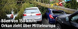 Beschädigtes Auto unter einem Baum