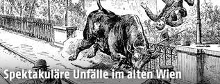 """Illustrationen aus dem Buch """"Spektakuläre Unglücksfälle aus dem alten Wien"""""""