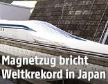 Maglev-Zug