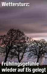 Gewiiterwolken über einem Feld mit Bäumen