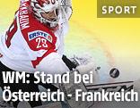 Eishockey-Tormann