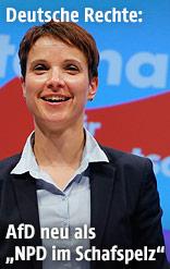 Parteivorsitzende der AfD Frauke Petry