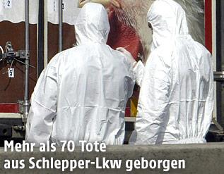 Mitarbeiter der Spurensicherung hinter dem Lkw, in dem die toten Flüchtlinge gefunden wurden