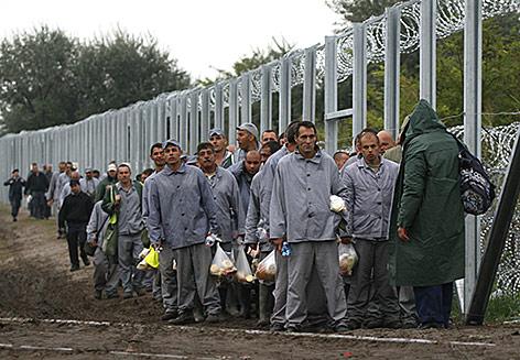 Häftlinge helfen bei der Errichtungen des Grenzzaunes