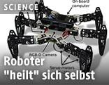Sechsbeiniger Roboter