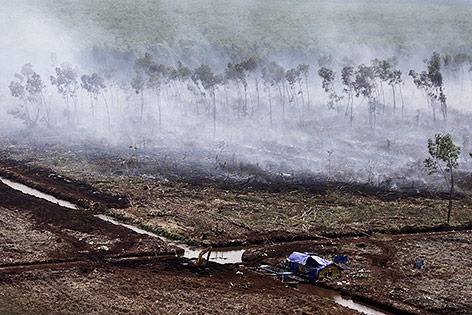 Waldbrände auf Sumatra, Indonesien