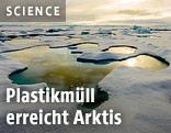 Eisschmelze in der Arktis, Sommer 2012