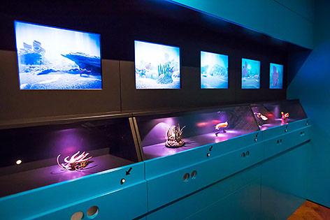 """Eindrücke von der Ausstellung """"Planet 3.0 - Klima.Leben.Zukunft"""""""