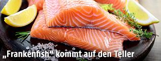 Lachs-Filets auf einem Teller
