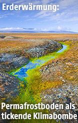 Permafrostboden
