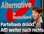 AfD-Parteichefin Frauke Petry