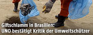 Tote Fische werden am Strand verscharrt