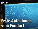 Unterwasseraufnahme vom Fundort
