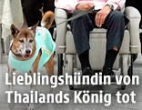 Der thailändische König mit seinem Lieblingshund