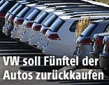 VW-Kombis bei einem Händler