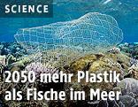 Plastikmüll im Meerwasser