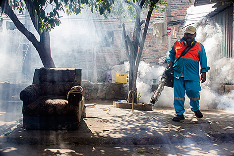 Gegen die Moskios werden Insektizide versprüht