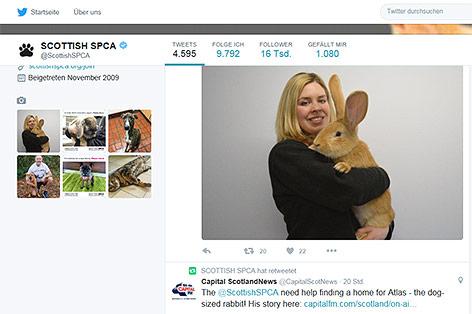 Screenshot twitter.com/ScottishSPCA
