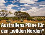 Wüstenlandschaft im Northern Territory
