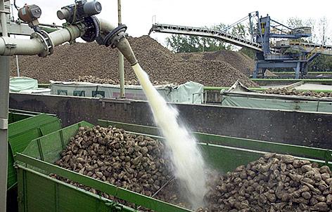 Zuckerrübenpreise