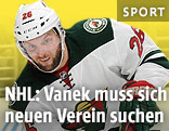 Thomas Vanek