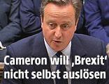 David Cameron im Parlament