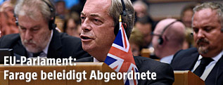 UKIP-Chef Nigel Farage im EU-Parlament