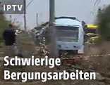 Verunglückte Züge