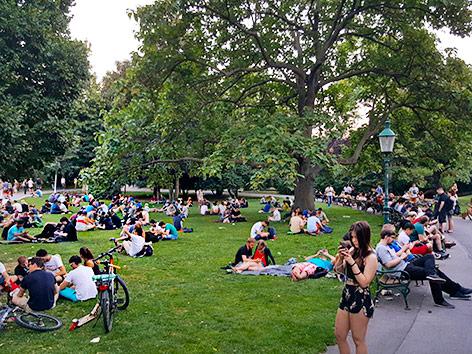 Pokémon-Spieler im Wiener Stadtpark