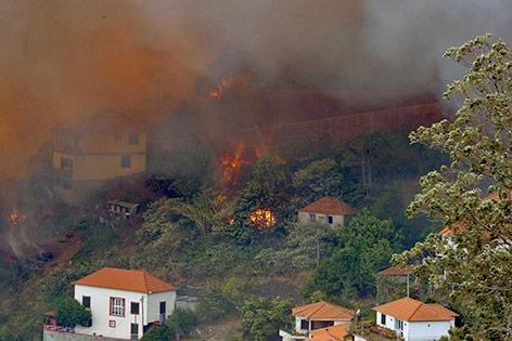 Waldbrand auf Madeira in Funchal