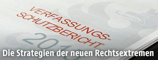 Verfassungsschutzbericht 2015