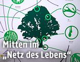 """Exponat der Ausstellung """"Vielfalt zählt! Eine Expedition durch die Biodiversität"""" im Naturhistorischen Museum, Wien"""