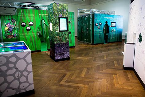 """Ausstellung """"Vielfalt zählt! Eine Expedition durch die Biodiversität"""" im Naturhistorischen Museum, Wien"""