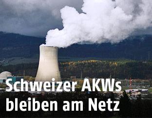 Schweizer Kernkraftwerk Gösgen