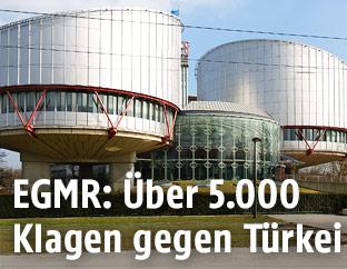 Der Europäische Menschenrechtsgerichtshof