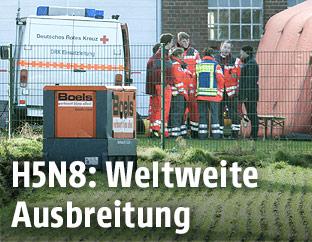 Desinfektion eines Putenmastbetriebs in Deutschland