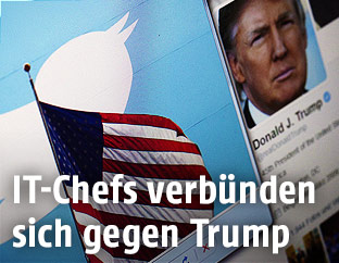 Twitter-Logo vor dem Twitter-Account von Donald Trump